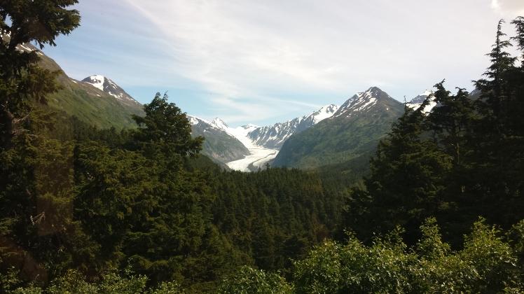 glacier with meadow