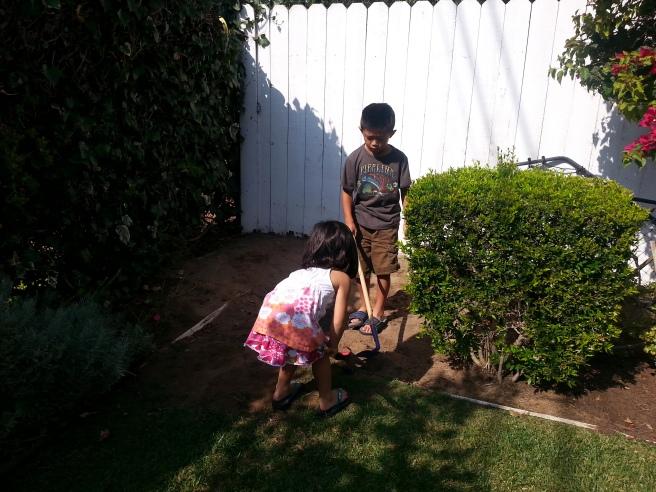 digging in the backyard