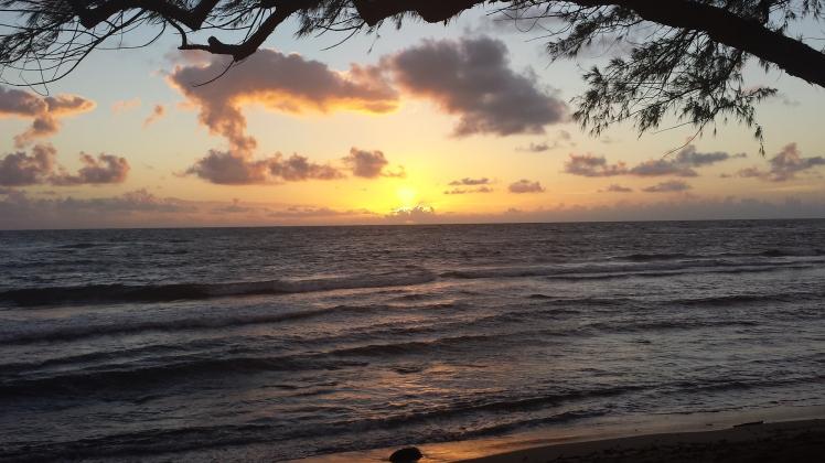 horizon hawaii
