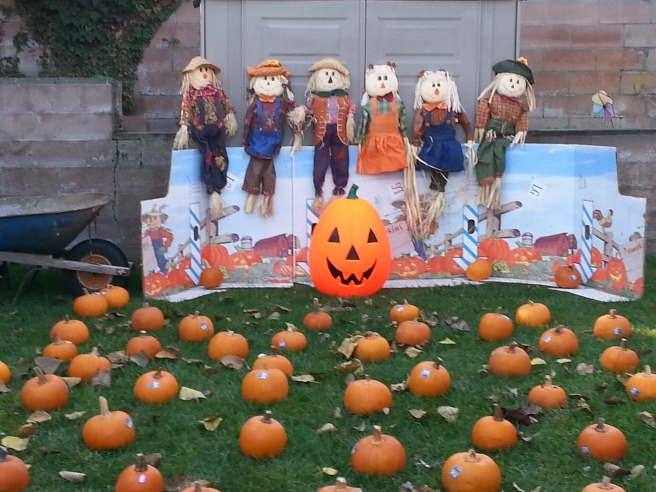 preschool pumpkin patch